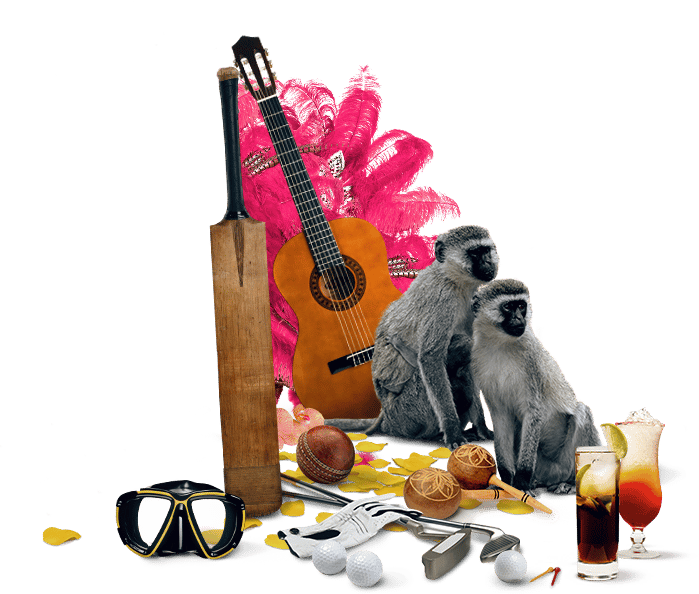 decorative image featuring a snorkeling mask, cricket bat, guitar, two monkeys, golf accessories, drinks, pink feathers, flower petals
