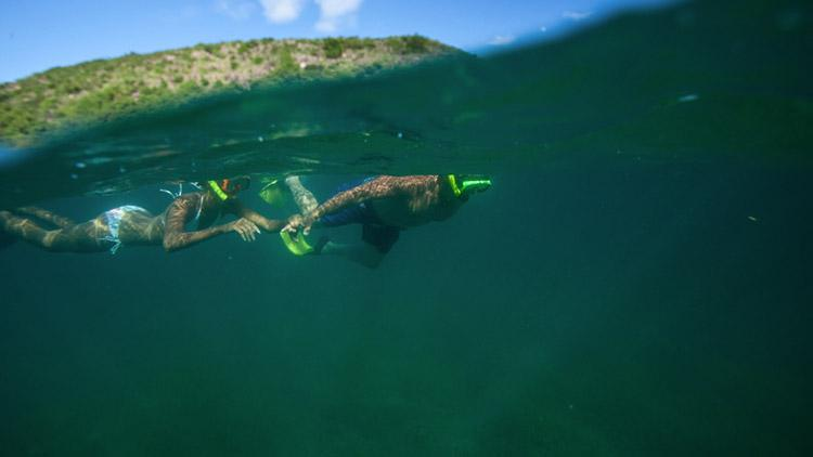 SNORKELING AT DIEPPE BAY BEACH