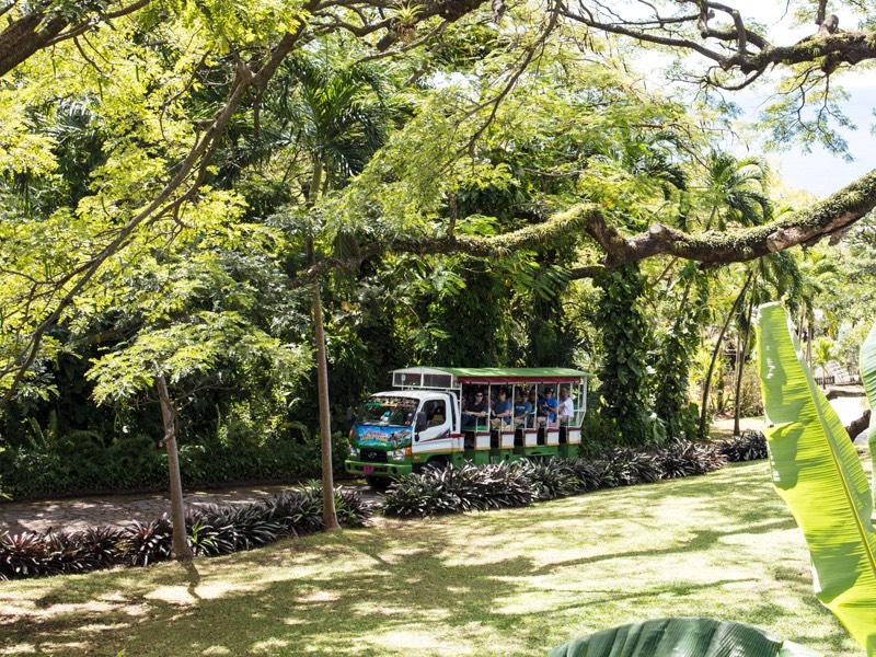Trips to St  Kitts - Plan | St  Kitts Travel