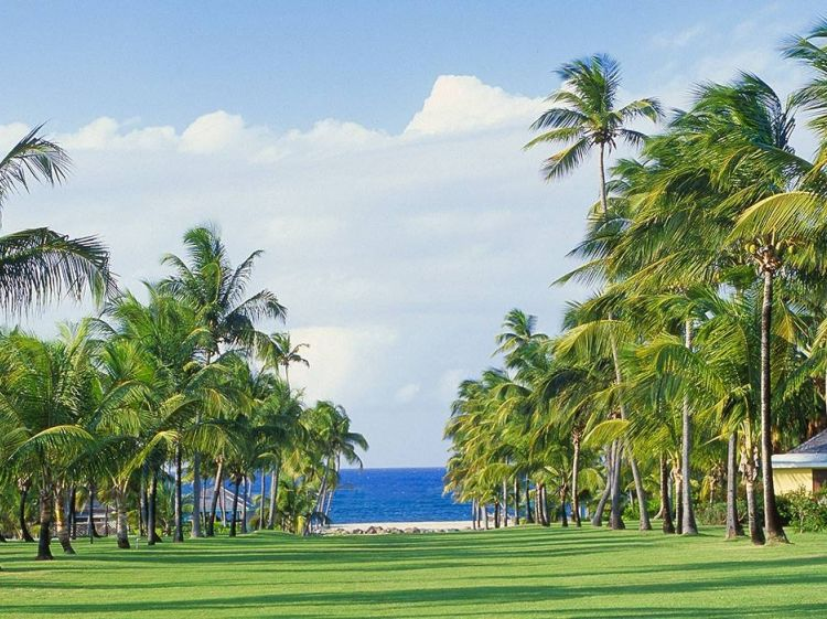 Nisbet Plantation Beach Club | StKittsTourism.kn