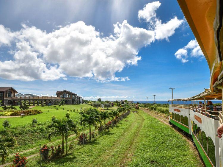 St. Kitts Scenic Railway | StKittsTourism.kn